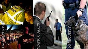 CAREER OPPORTUNITIES AND ADVANCEMENT IN THE SECURITY SECTOR